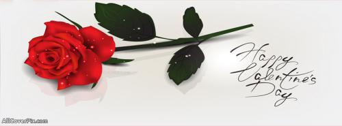 Rose Happy Valentines Day Covers For Facebook -  Facebook Covers